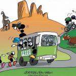 Bus gratuito per Socrepes, fino al 12 settembre